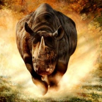 beautiful-rhinoceros-picture-paintings-2